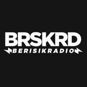 Radio Berisik Radio